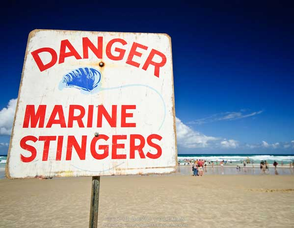 Stinger Warning Sign
