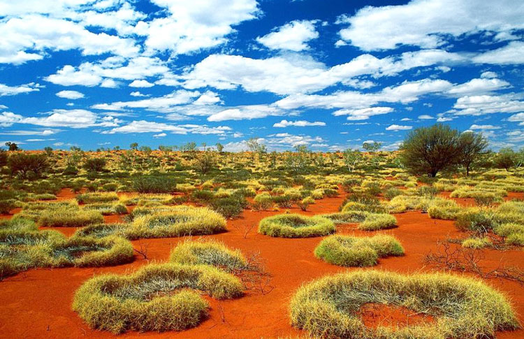 little sandy desert australia