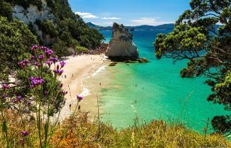 Stunning Cathedral Cove New Zealand