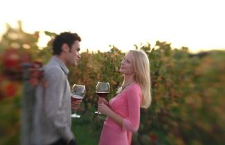 A couple enjoying a glass of wine in a Hawkesbay vinyard.