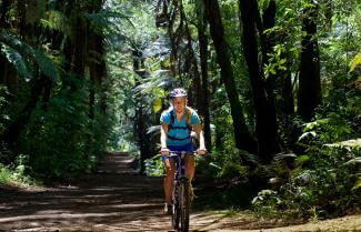 Enjoy Mountain Biking in the impressive Rotorua forests.