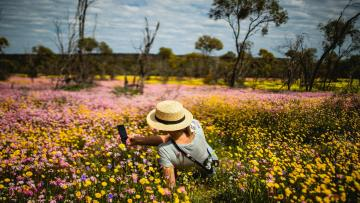 Springtime in beautiful Western Australia